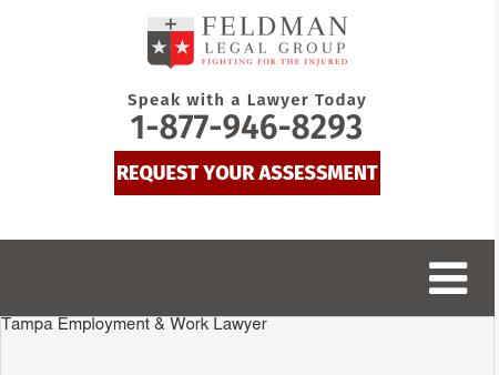 Feldman Law Group PA
