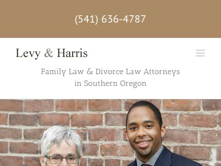 Wendy Levy Family Law Attorney