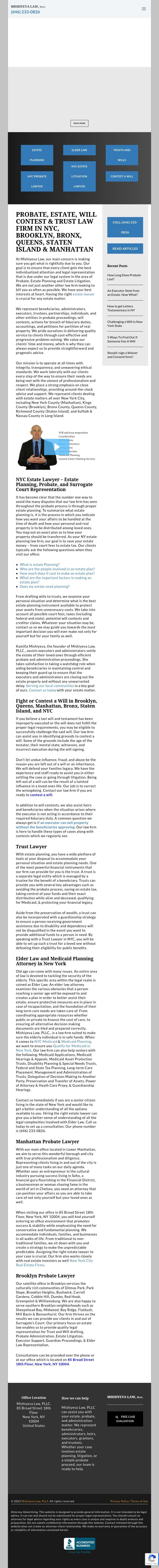 Mishiyeva Law Pllc New York Ny Law Lawyerland